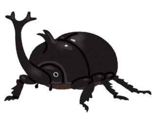 bug_kabutomushi_osu_black.png