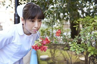 cut51_flowerjuice-736x491.jpg